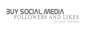 Buy Social Media followers and likes for your business