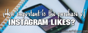 How important is the purchase of Instagram likes